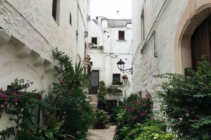 Locorotondo, una via del borgo ricca di piante ornamentali