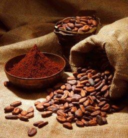 Ferrero, varie forme di cacao