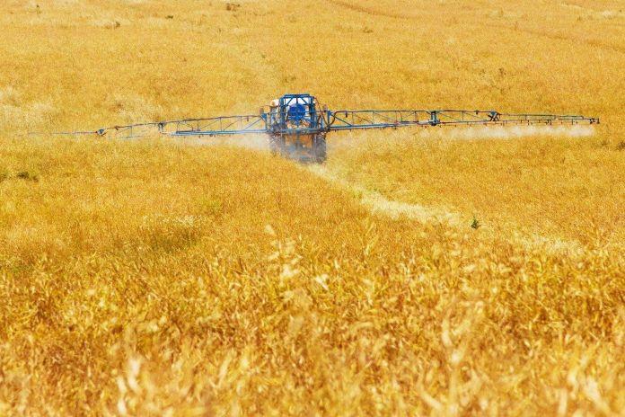 Prodotti green, quelli italiani usano meno pesticidi
