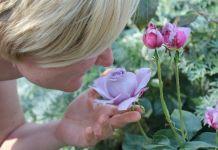 La perdita di gusto e olfatto è uno dei sintomi del Covid-19