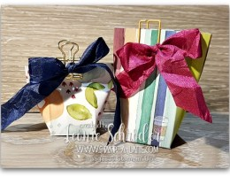 Mini Pinch o Treat Bags by Leonie Schroder Independent Stampin' Up! Demonstrator