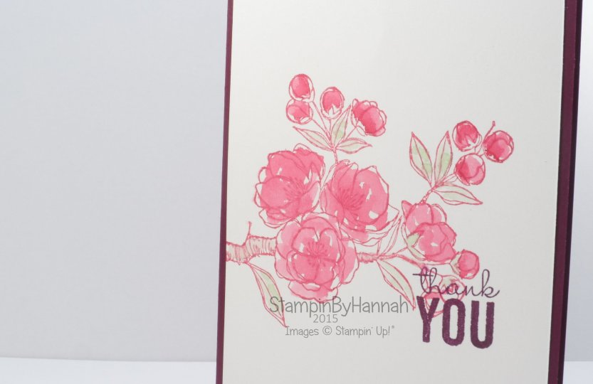 Stampin' Up! Indescribable gift painted petals