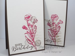 Stampin' Up! UK butterfly basics video tutorial