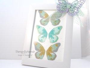 Stampin' Up! UK watercolour wings stamping tutorial