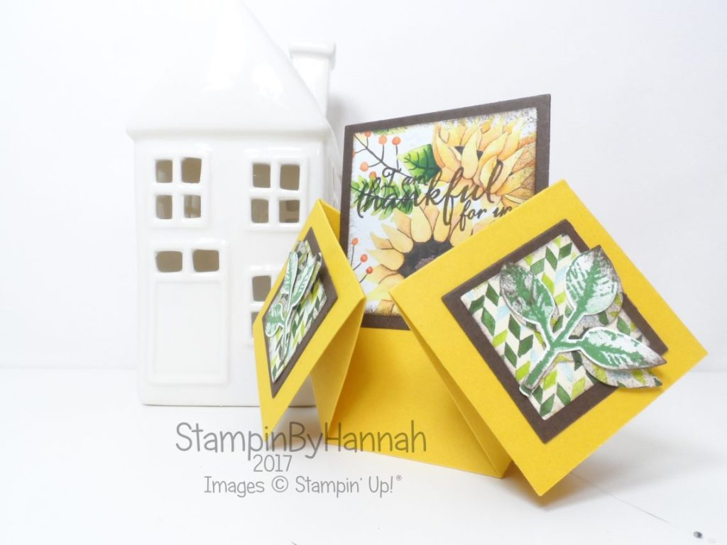 Inspire.Create.Challenge Theme Challenge Fancy Fold Cards Double Diamond Fold using Painted Autumn from Stampin' Up!