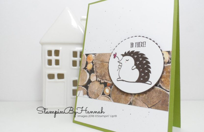 Quick and easy Hi There card using Hedgehugs from Stampin' Up!