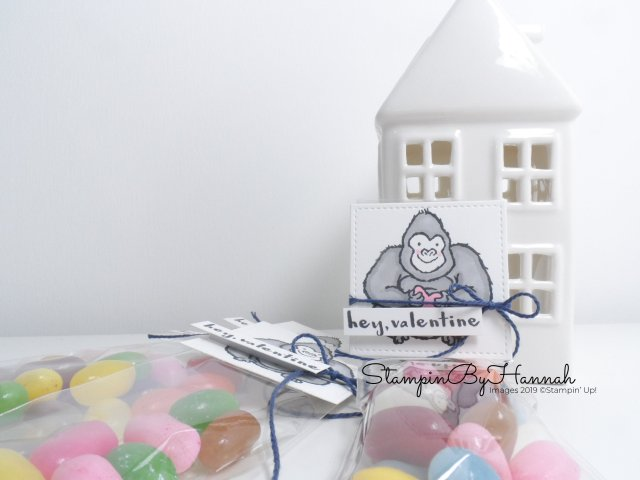 Hey Valentine Sweet Bags video tutorial using Hey Love from Stampin' Up! with StampinByHannah