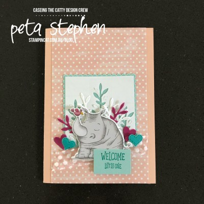 #stampin_cat #ctc257 #animalouting #stampinup