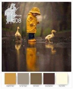 Colour INKspiration C108