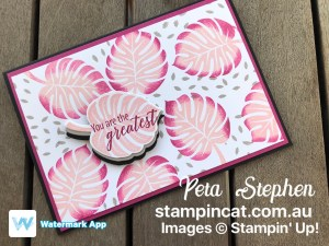 Stampin' Cat CI38 Tropical Chic Stampin' Up!