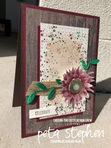 Stampin' Cat CTC192 Painted Harvest Timeless Textures Stampin' Up!