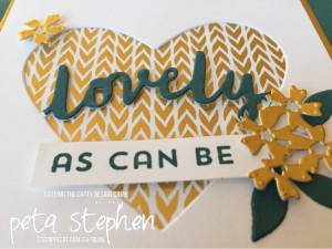 Stampin' Cat CTC140 Lovely Words