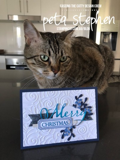 Stampin' Cat CTC205 All Is Bright Sprig Punch Stampin' Up!