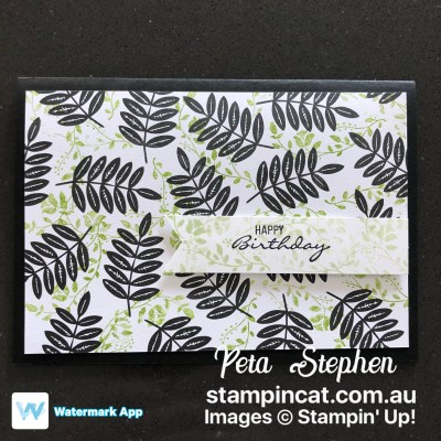 #simplestamping #stampin_cat #tropicalescape #diy #handmadecard #stampinup