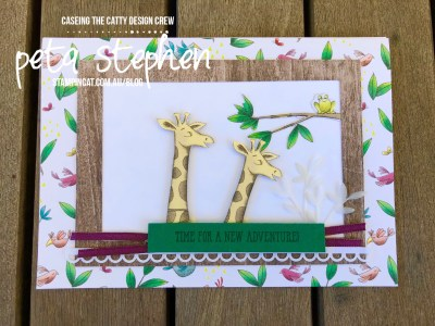 Stampin' Cat CTC213 Animal Expedition Stampin' Up!