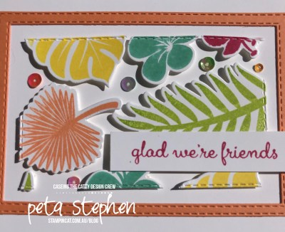 #stampin_cat #ctc231 #tropicalchic #floatingframe #stampinup