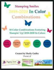 2018-2020 In Color Combinations e-book
