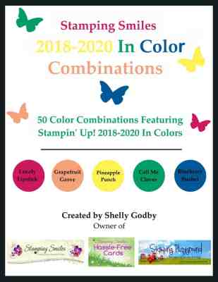 2018-2020 In Color Combinations e-book