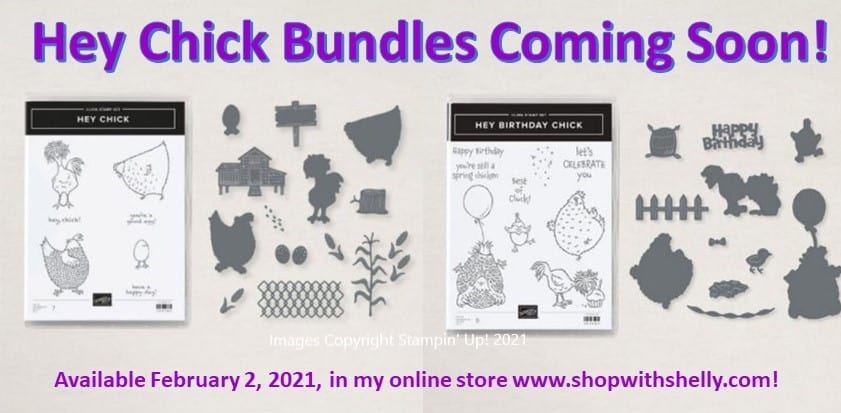 Stampin' Up! Hey Chick Bundle and Stampin' Up! Hey Birthday Chick Bundle