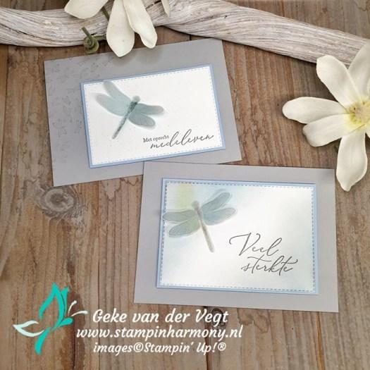 Dragonfly Garden condoleance kaarten