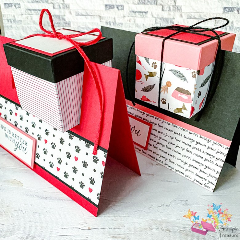 box in een kaart, box up, papier met design, dsp, designer series paper, stampin up, playful pets