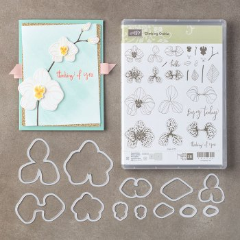 Climbing Orchid Bundle, Stampin' Up!