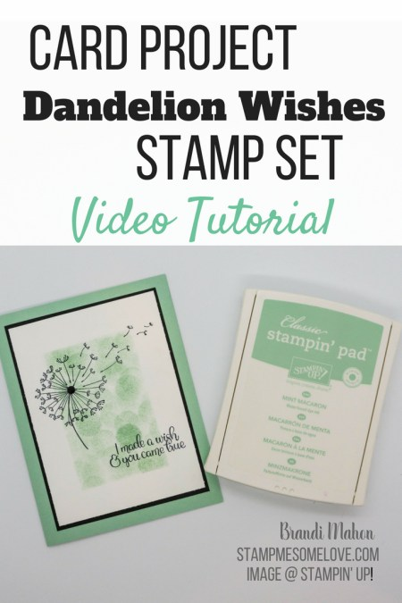 Create a beautiful card using the Stampin' Up! Dandelion Wishes Stamp Set. Also learn how to create a DYI Bokeh effect with Sponge Daubers | Stampin' Up! cards | Mint Macaroon | Stamperatus | Stamperatus Techniques | Mask Stamping | Rubber Stamping | mint macaron stampin | stampin up cards newest | paper cards handmade | greeting cards | | #stampmesomelove #stampinup #cardmaking