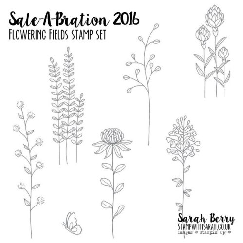 Sale-A-Bration Flowering Fields Stamp Set