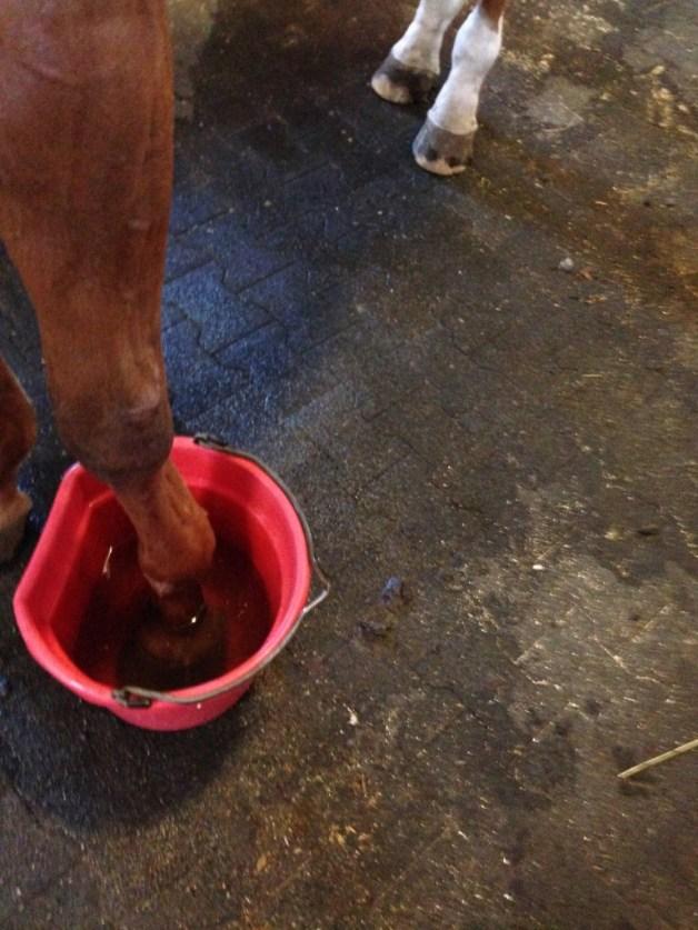 Foot in a bucket