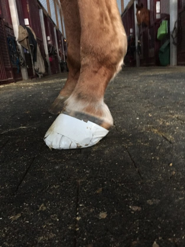 Looking fancy in the white tape boot