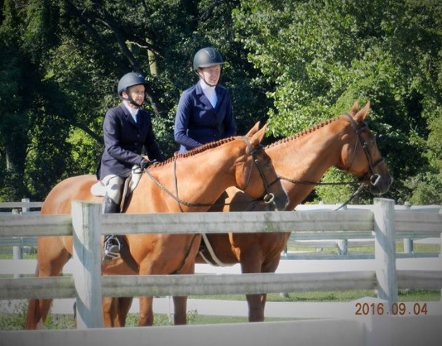 Waiting to show on Sunday - watching a friend on course from the schooling ring