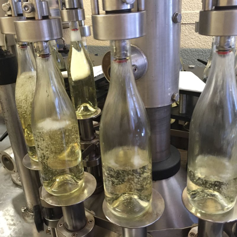 Bottling Day – May 25, 2016