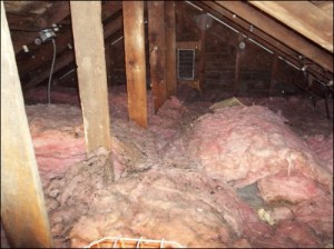 attic insulation mold standard insulating central new york