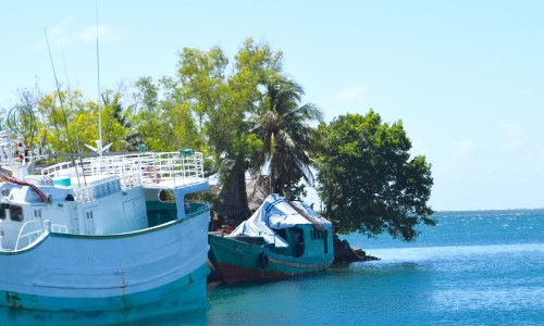 Save the Green Boat Asylum Seekers in Yap