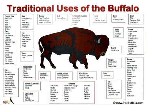 uses-of-buffalo