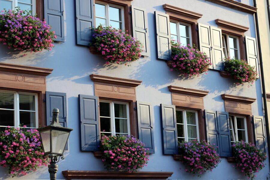 Wijnreis Freiburg: bekijk het centrum van Freiburg