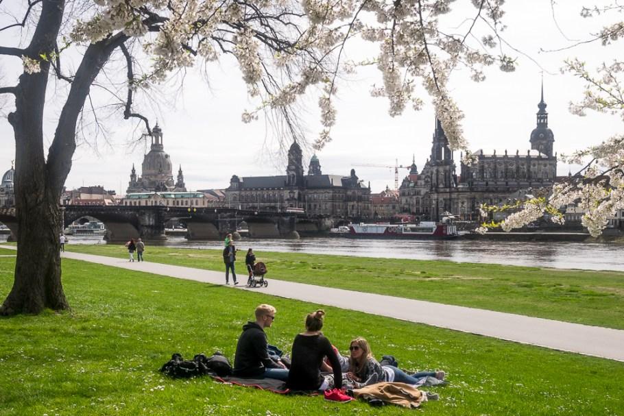 20150412 - P1130041- BerlijnBlog Dresden Elbwiesen