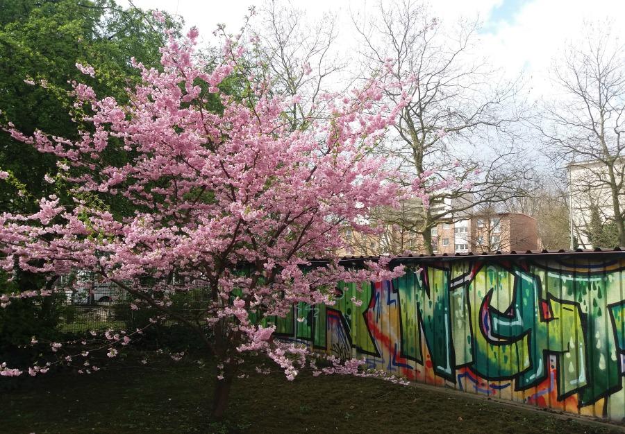 Hamburg in de lente - Street Art