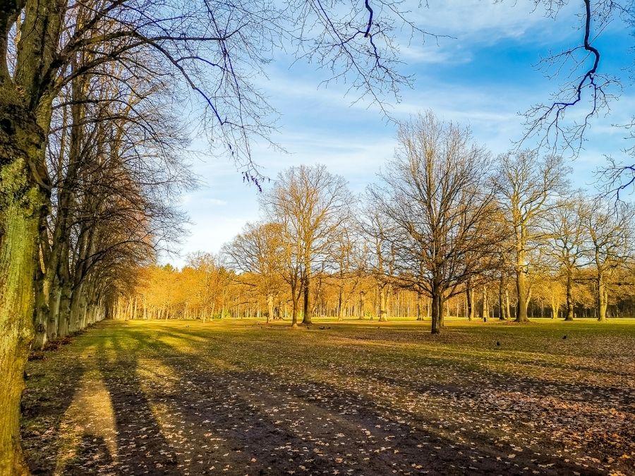 Altonaer Volkspark: een van de meest diverse en mooiste parken in Hamburg
