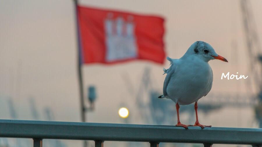 Vooroordelen over Hamburg: Hamburgrs zijn lomperikken