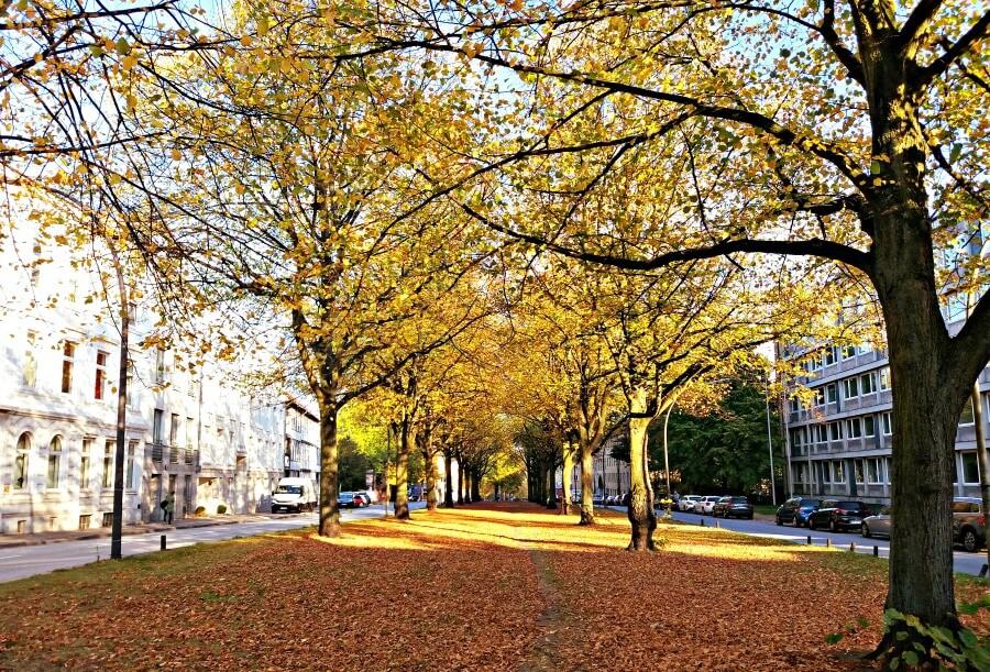 Hamburg in oktober: herfstwandeling