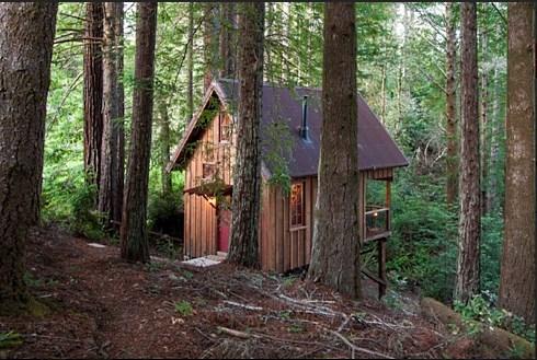 Tiny Cabins Cozy Quarters