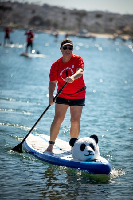 Panda Paddle World Wildlife Fund Panda head