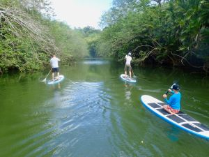 Richmond River Tobago