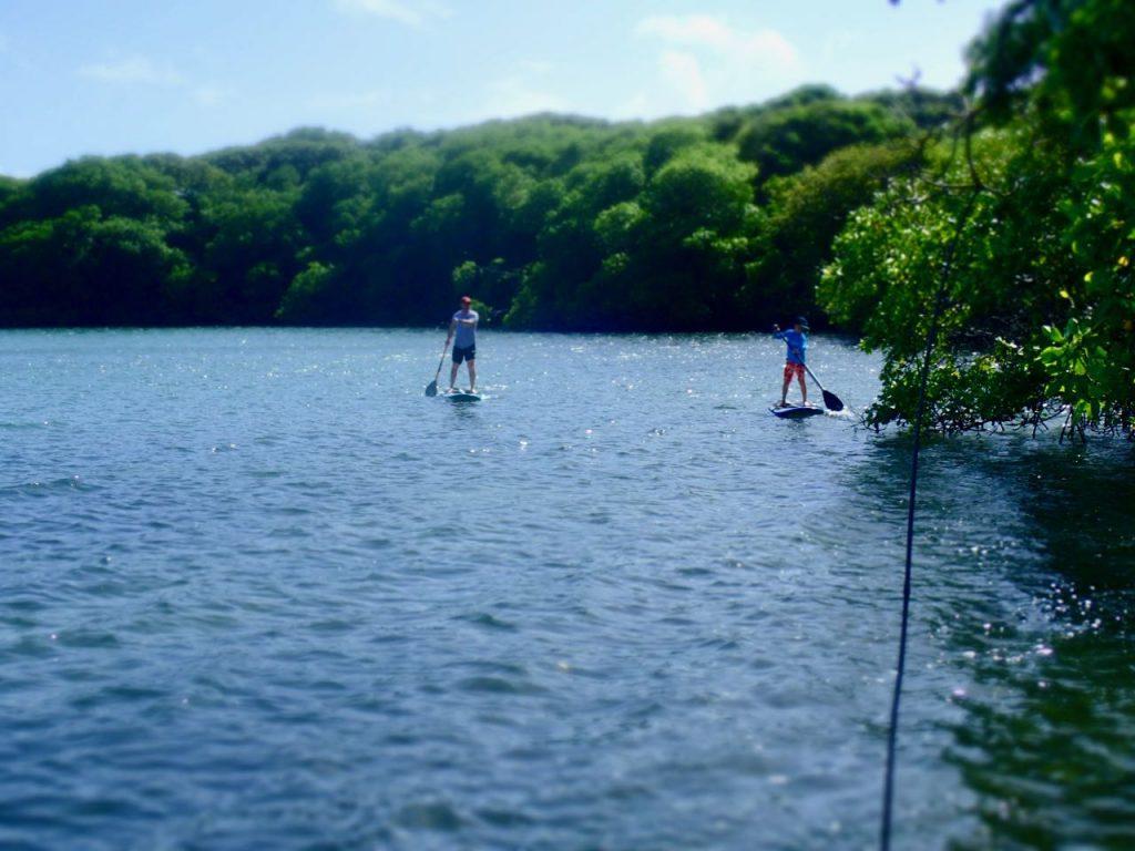 Petit Trou Lagoon Tobago