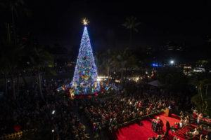 CINDY ELLEN RUSSELL / CRUSSELL@STARADVERTISER.COM                                 Thousands turn out for the opening of the 35th Annual Honolulu City Lights on Dec. 7. The light display will end early this year, on Dec. 29.