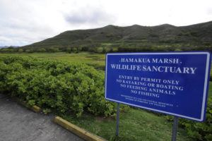 BRUCE ASATO / 2013                                 The Hamakua Marsh Wildlife Sanctuary sign is seen at the parking lot on Hamakua Drive.