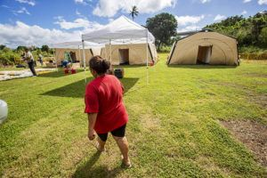 DENNIS ODA / DODA@STARADVERTISER.COM                                 Tents are seen at the HONU homeless triage program at Waipahu Cultural Garden Park in December. The program will relocate next week to Old Stadium Park in Moiliili.