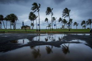 DENNIS ODA / DODA@STARADVERTISER.COM                                 A few beachgoers at Haleiwa Beach Park braved the windy, rainy, cold weather, Feb. 6.