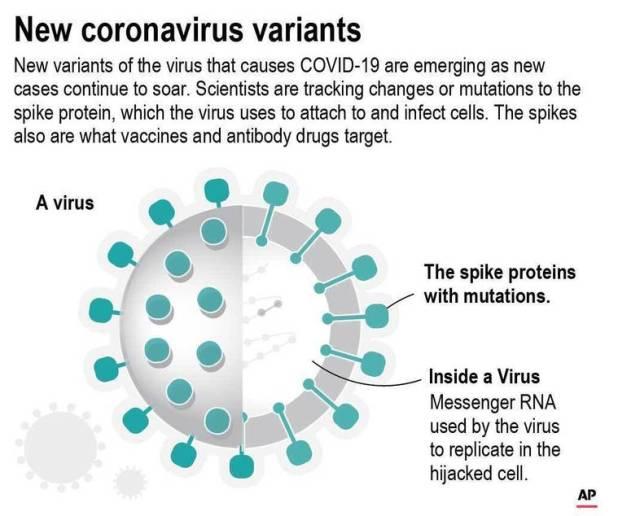COVID-19 virus associated pressure diagram